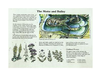 Castle Acre Castle Information Panel, Norfolk--Giclee Print