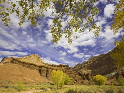 Castle and Fluted Wall Formations in Capitol Reef National Park-John Eastcott & Yva Momatiuk-Photographic Print