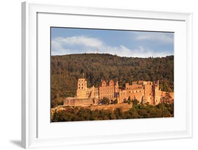 Castle at sunset, Heidelberg, Baden-Wurttemberg, Germany, Europe-Markus Lange-Framed Photographic Print