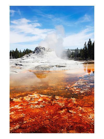Castle Geyser Yellowstone Park--Art Print