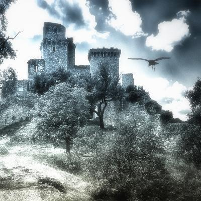 Castle in Moonlight, Assisi, Italy-Dolores Smart-Photographic Print