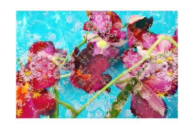 Castle Orchid-Alaya Gadeh-Art Print
