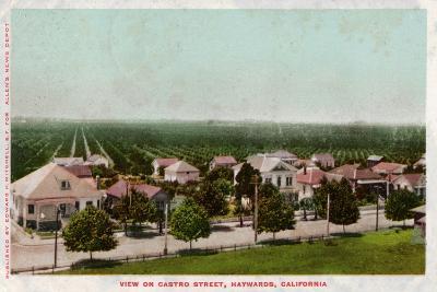 Castro Street, Hayward, California, 1905--Giclee Print