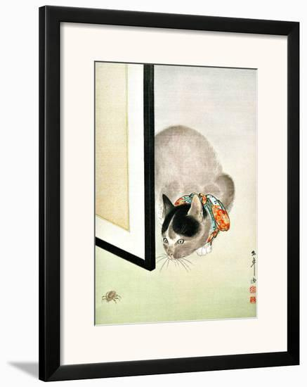 Cat and Spider--Framed Giclee Print