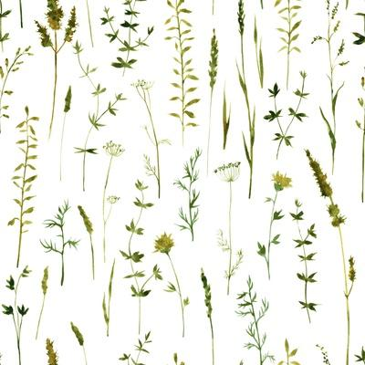Vector Seamless Pattern with Silhouettes of Flowers and Grass, Drawing by Watercolor, Hand Drawn Fl