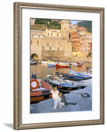 Cat by Harbour, Village of Vernazza, Cinque Terre, Unesco World Heritage Site, Liguria, Italy-Bruno Morandi-Framed Photographic Print