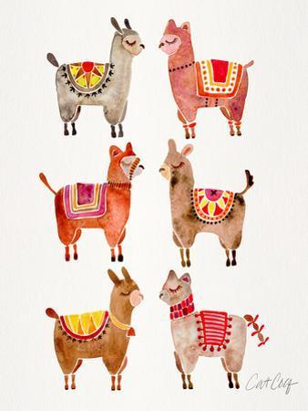 Alpacas by Cat Coquillette
