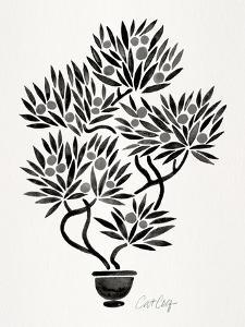 Black Bonsai by Cat Coquillette