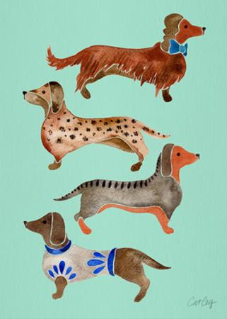 Blue Dachshunds by Cat Coquillette