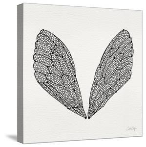 Cicada Wings in Black Ink by Cat Coquillette