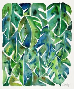 Green Philodendron by Cat Coquillette
