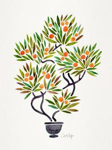 Orange Bonsai Orange by Cat Coquillette