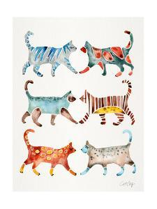 Original Cat Collection by Cat Coquillette