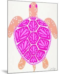 Sea Turtle Pink by Cat Coquillette