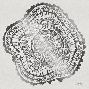 Tree Rings in Silver by Cat Coquillette