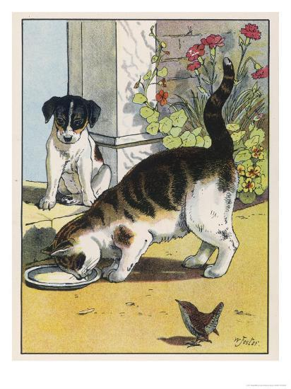 Cat Drinks a Saucer of Milk at a Doorstep Whilst Watched by a Dog-W^ Foster-Giclee Print