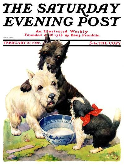 """""""Cat Guards Bowl of Milk,"""" Saturday Evening Post Cover, February 27, 1926-Robert L^ Dickey-Giclee Print"""