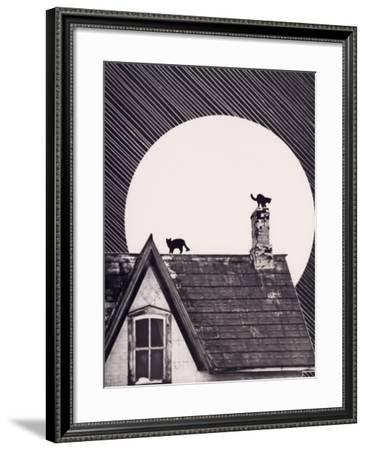 Cat House Moon--Framed Photographic Print