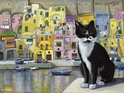 Cat in Corricella, Italy-Isy Ochoa-Giclee Print