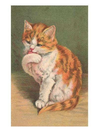 Cat Licking Paw--Art Print