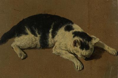Cat lying down-Adriaen van de Velde-Giclee Print