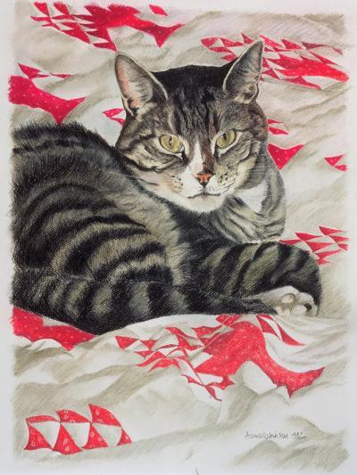 Cat on Quilt-Anne Robinson-Giclee Print
