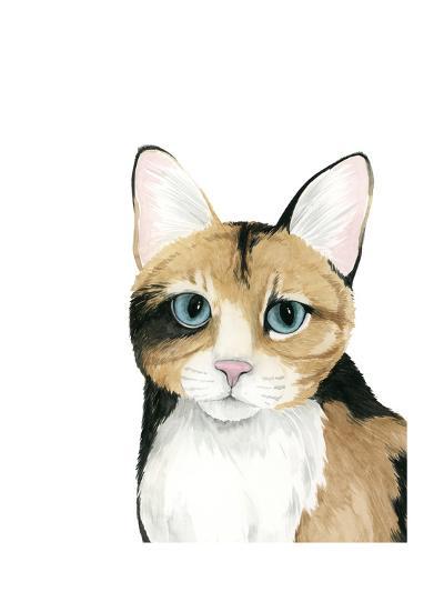 Cat Portrait II-Grace Popp-Art Print