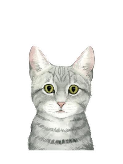 Cat Portrait III-Grace Popp-Art Print
