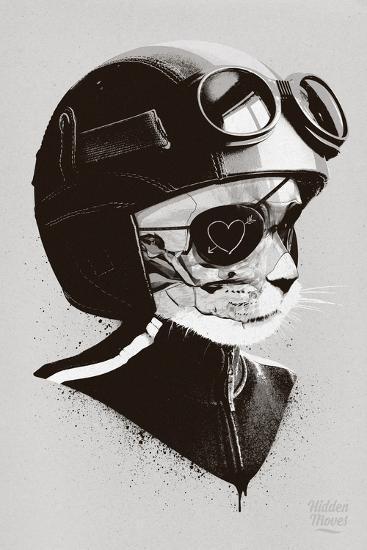 Cat Racer-Hidden Moves-Wall Mural