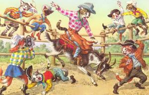 Cat Rodeo