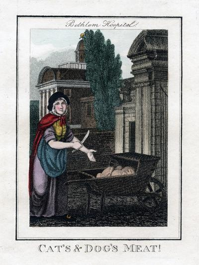 Cat's and Dog's Meat!, Bethlem Hospital, London, 1805--Giclee Print