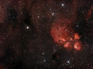 Cat's Paw Nebula in Scorpius