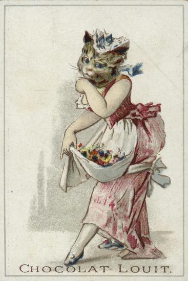 Cat Wearing a Dress--Giclee Print