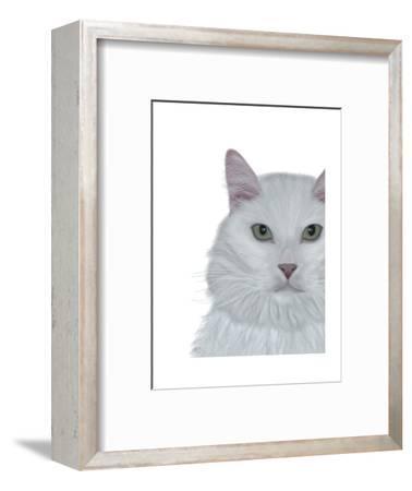 Cat, White Portrait on White-Fab Funky-Framed Art Print