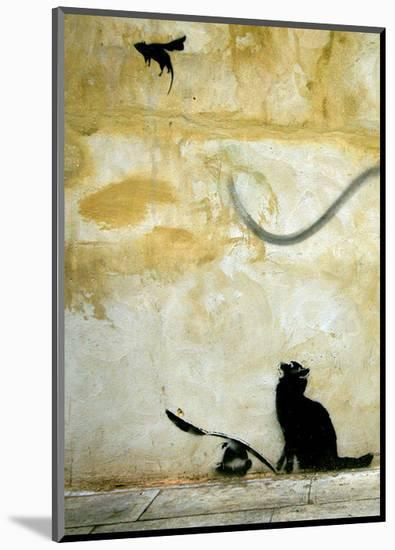 Cat-Banksy-Mounted Giclee Print