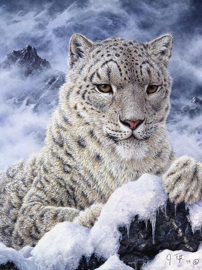 Cat-Jeff Tift-Giclee Print