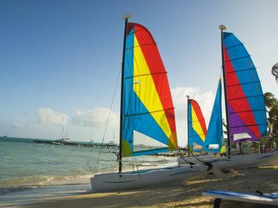 Catamarans with Colorful Sails on a Beach-James Forte-Photographic Print