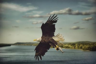 Catch of the Day-Jai Johnson-Giclee Print