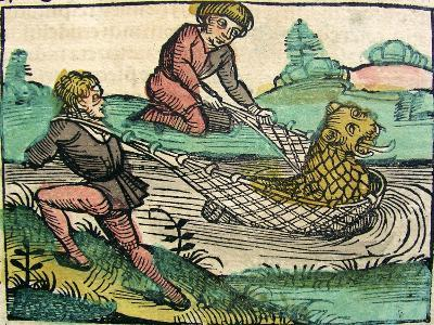 Catching a Lion Cat Fish Monster Published in the Nuremberg Chronicle, 1493--Giclee Print
