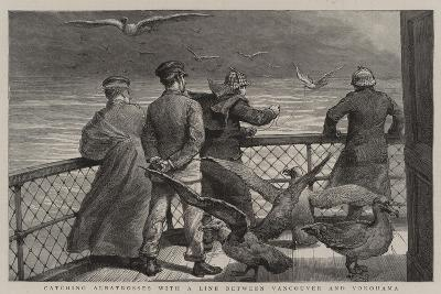 Catching Albatrosses with a Line Between Vancouver and Yokohama--Giclee Print