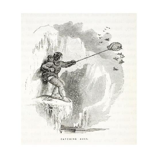 Catching Auks-Elisha Kane-Giclee Print