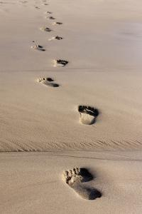 Beach, Footprints in the Sand by Catharina Lux