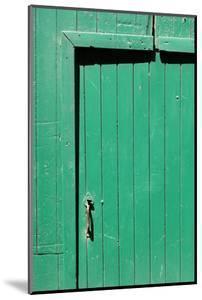 Farm, Green Barn Door, Detail by Catharina Lux