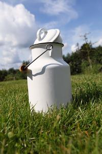 Farm, Meadow, Milk Churn by Catharina Lux