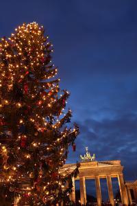 Germany, Berlin, the Brandenburg Gate, Night, Christmas Tree by Catharina Lux