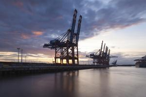 Hamburg, Container Terminal, Harbour Cranes by Catharina Lux