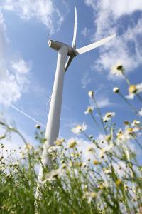 Schleswig-Holstein, Wind Turbine, Nature, Wind Power by Catharina Lux