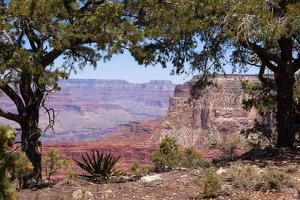 USA, Grand Canyon National Park, South Rim by Catharina Lux