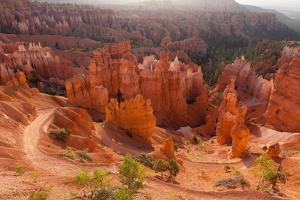 USA, Utah, Bryce Canyon, Amphitheater, Sunrise by Catharina Lux