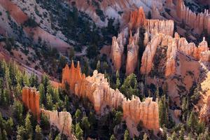 USA, Utah, Bryce Canyon, Amphitheatre by Catharina Lux